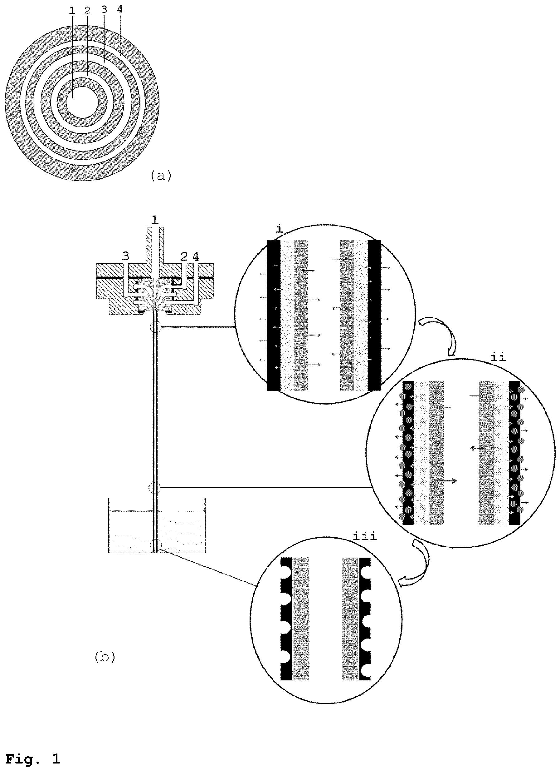 Drill Bit Drawing