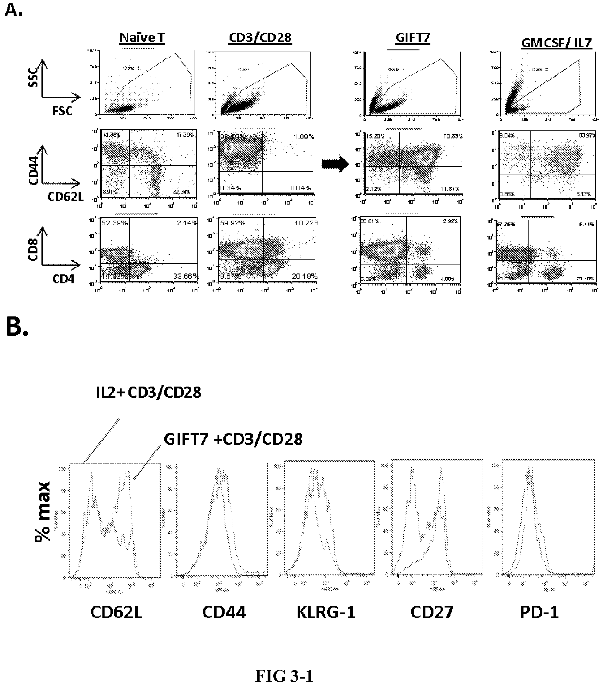 CONJUGATES OF GM-CSF AND IL-7, COMPOSITIONS AND METHODS