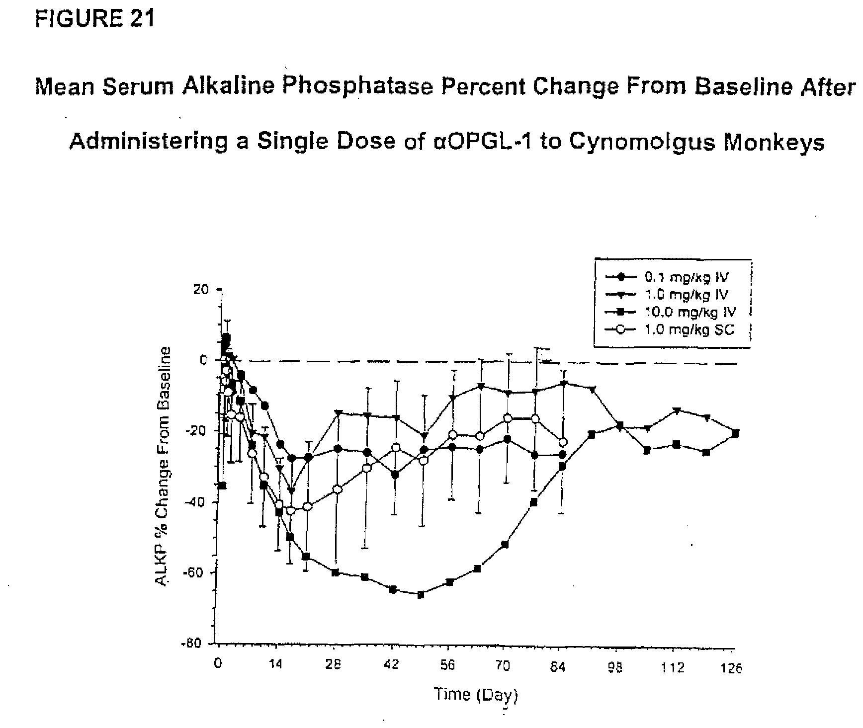 ANTIBODIES TO OPGL - Patent 2087908