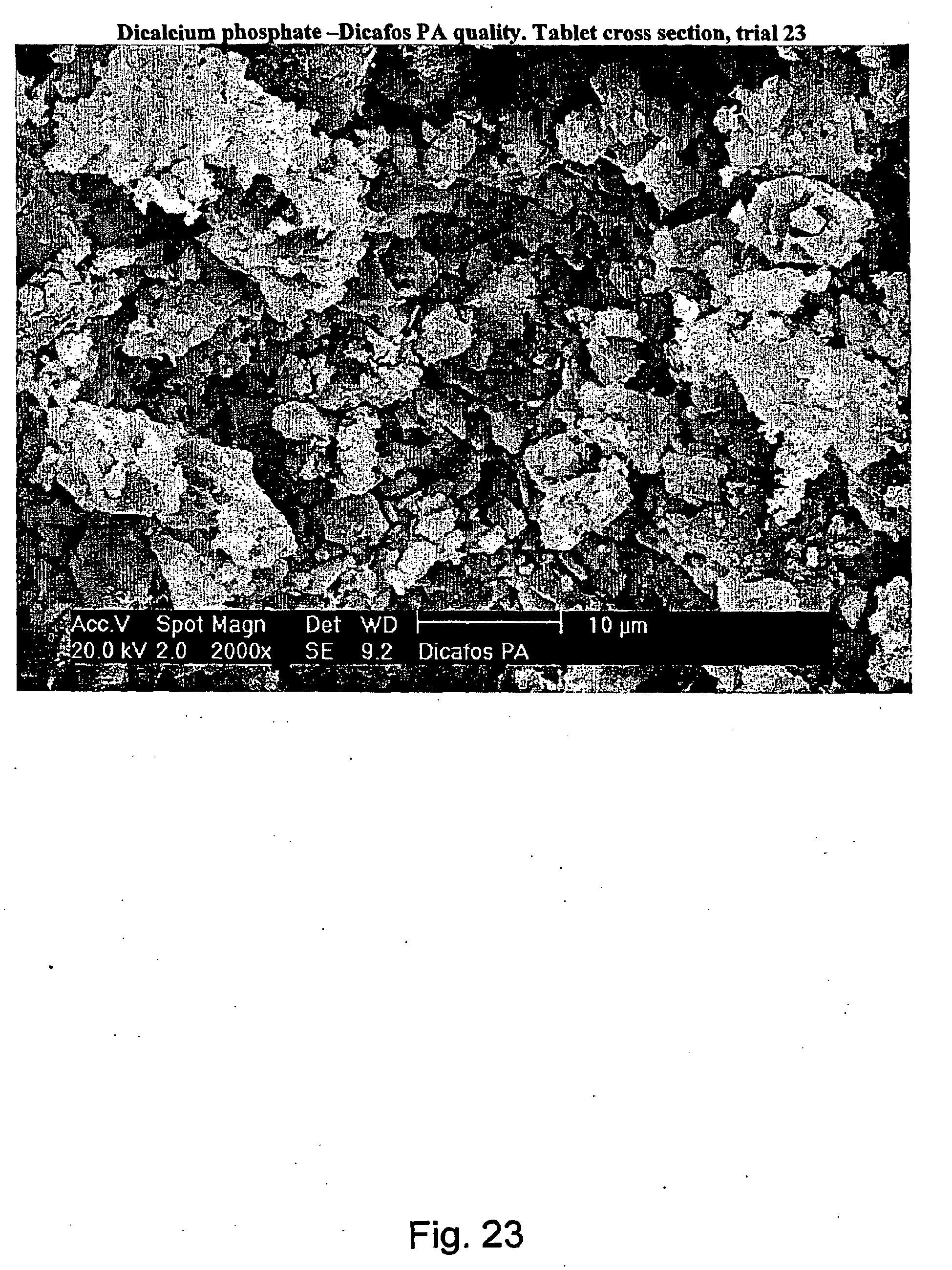 PRE-COMPACTED CALCIUM-CONTAINING COMPOSITIONS - Patent 1962806